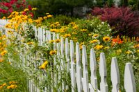 7 Ways to Mend Your Fences